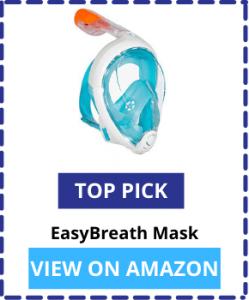 Snorkel Masks Top Pick