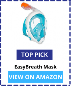 Snorkel Masks Top Pick