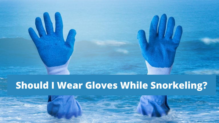 Should I Wear Gloves While Snorkeling